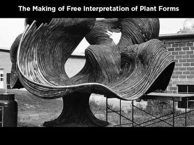 The Making of Free Interpretation of Plant Forms