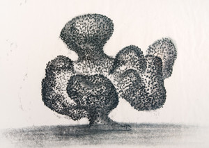 Harry Bertoia: Study for the Philadelphia Civic Center Fountain () Ink on Japanese rice paper