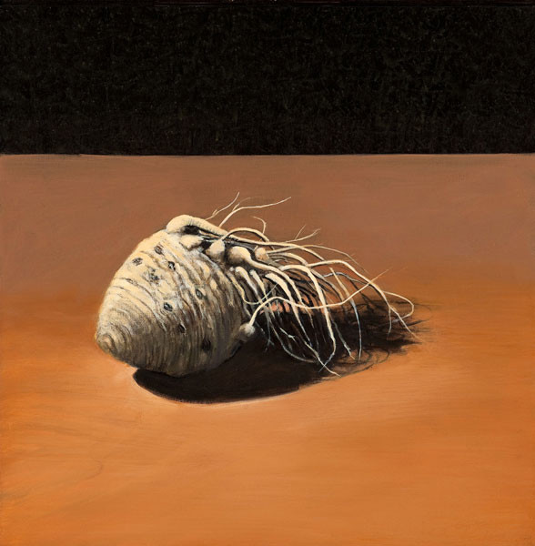 Jimmy Lueders: Celery Root (1993) Oil on canvas