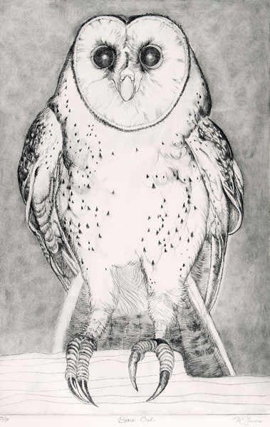 Christine McGinnis: Barn Owl (Undated) Engraving on plexiglass