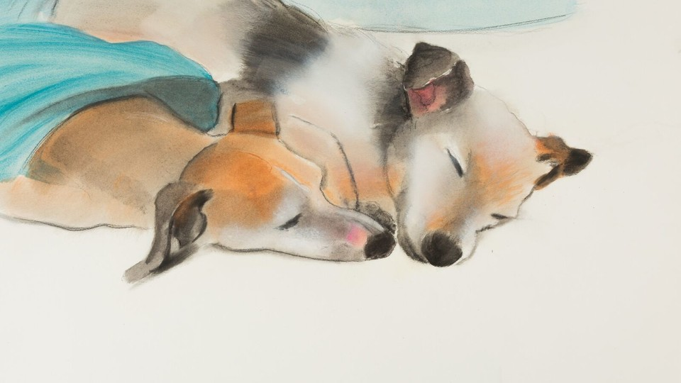 Elizabeth Osborne: Animal Paintings and Watercolors